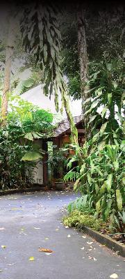 Heritage Lodge and Spa in the Daintree