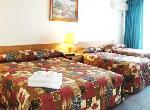 Best Western Gosford Motor Inn, Deluxe Bay Hotel Room-1 Q+2s