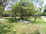 Darwin Freespirit Resort, Cathedral (powered Site)