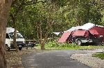 Clarks Beach Holiday Park, Pet Friendly Powered Site