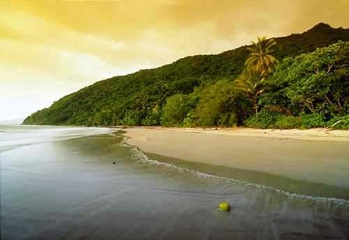 Cape Tribulation Resort and Spa