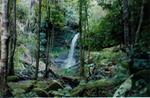 Watagan Mountains, Lake Macquarie