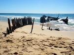 Dicky Beach, Sunshine Coast